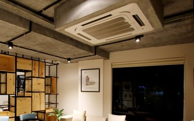 Central Air Purifier System Or Individual Room?